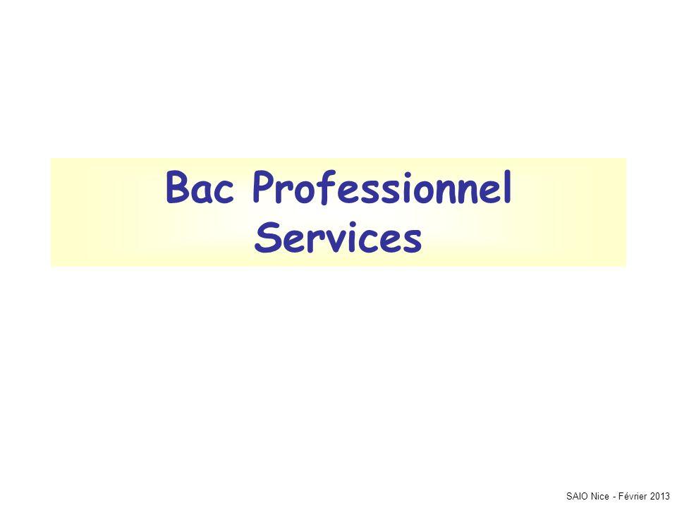 SAIO Nice - Février 2013 Bac Professionnel Services