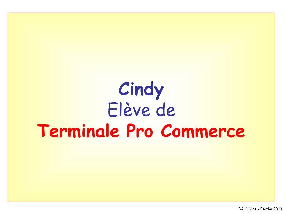 SAIO Nice - Février 2013 Cindy Elève de Terminale Pro Commerce