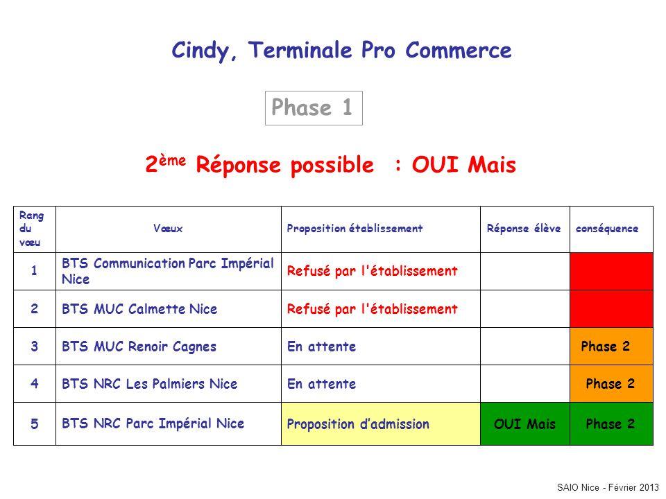 SAIO Nice - Février 2013 Cindy, Terminale Pro Commerce Phase 2 OUI MaisProposition dadmissionBTS NRC Parc Impérial Nice5 En attenteBTS NRC Les Palmier