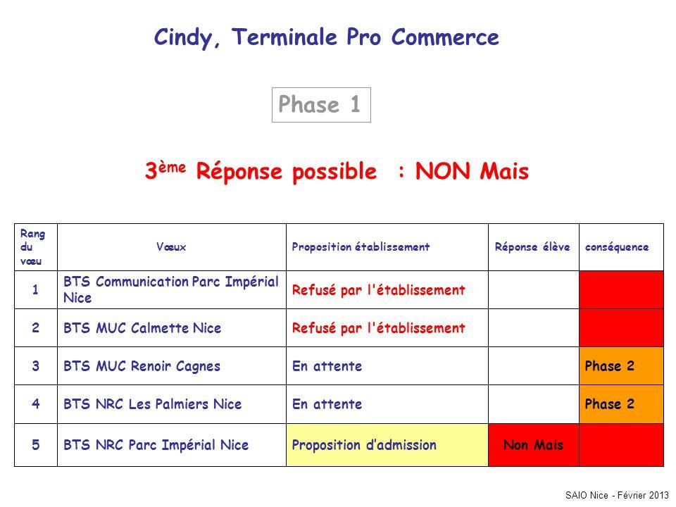 SAIO Nice - Février 2013 Cindy, Terminale Pro Commerce Phase 2 Non MaisProposition dadmissionBTS NRC Parc Impérial Nice5 En attenteBTS NRC Les Palmier