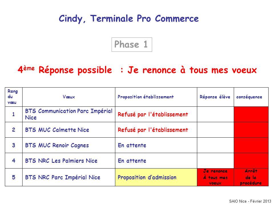 SAIO Nice - Février 2013 Cindy, Terminale Pro Commerce Arrêt de la procédure Je renonce À tous mes voeux Proposition dadmissionBTS NRC Parc Impérial N
