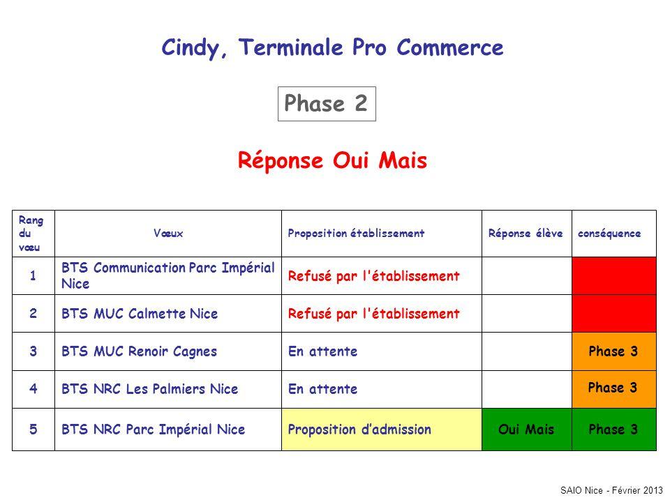 SAIO Nice - Février 2013 Cindy, Terminale Pro Commerce Phase 3 Oui MaisProposition dadmissionBTS NRC Parc Impérial Nice5 En attenteBTS NRC Les Palmier
