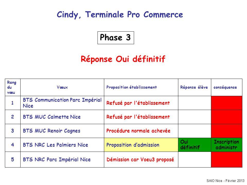 SAIO Nice - Février 2013 Cindy, Terminale Pro Commerce Inscription administr Démission car Voeu3 proposéBTS NRC Parc Impérial Nice5 Oui définitif Prop