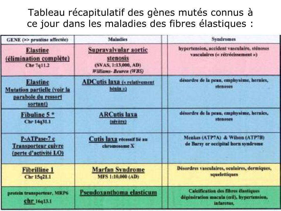 47 Tableau récapitulatif des gènes mutés connus à ce jour dans les maladies des fibres élastiques :