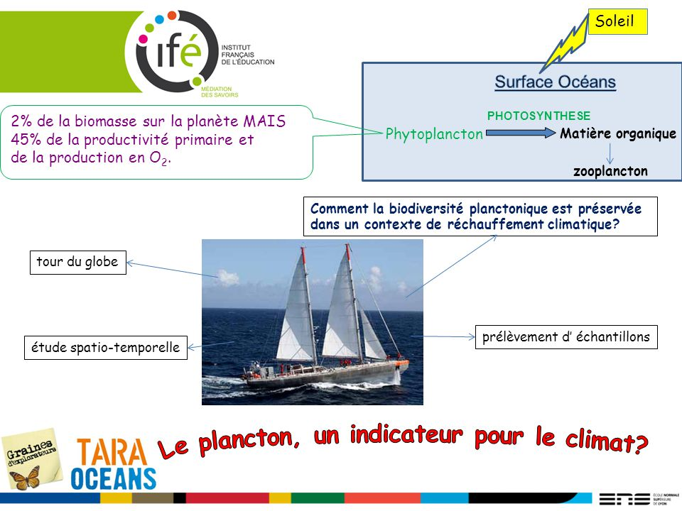 Réchauffement global Approfondissement de la thermocline Solubilité des gaz (O 2 ; CO 2 ) Sels nutritifs dans les couches superficielles O 2 dans les eaux profondes Phytoplancton petite taille Développement des bactéries Diminution des échelons trophiques supérieurs Le plancton un indicateur du réchauffement climatique