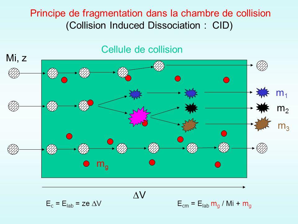 Principe de fragmentation dans la chambre de collision (Collision Induced Dissociation : CID) Cellule de collision V E c = E lab = ze V E cm = E lab m g / Mi + m g Mi, z mgmg m1m1 m2m2 m3m3