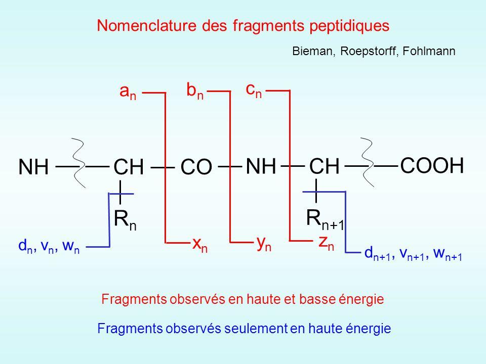 Nomenclature des fragments peptidiques Fragments observés seulement en haute énergie CH RnRn CO NHCH R n+1 anan bnbn cncn xnxn ynyn znzn NH COOH dn, vn, wndn, vn, wn d n+1, v n+1, w n+1 Fragments observés en haute et basse énergie Bieman, Roepstorff, Fohlmann