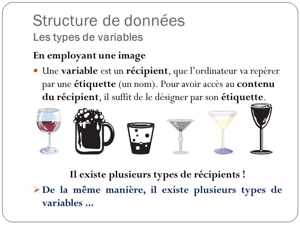 Structure de données Les types de variables En employant une image Une variable est un récipient, que lordinateur va repérer par une étiquette (un nom