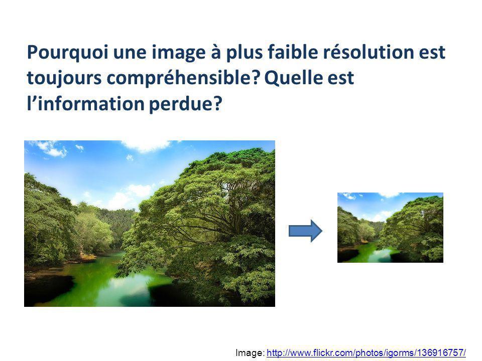 Pourquoi une image à plus faible résolution est toujours compréhensible? Quelle est linformation perdue? Image: http://www.flickr.com/photos/igorms/13