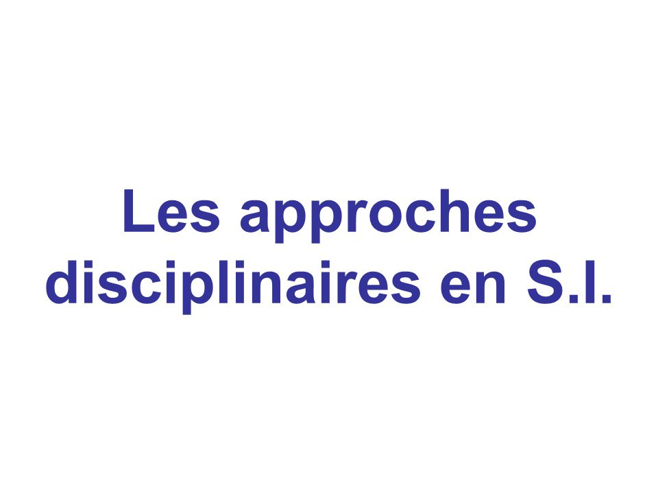 Les approches disciplinaires en S.I.