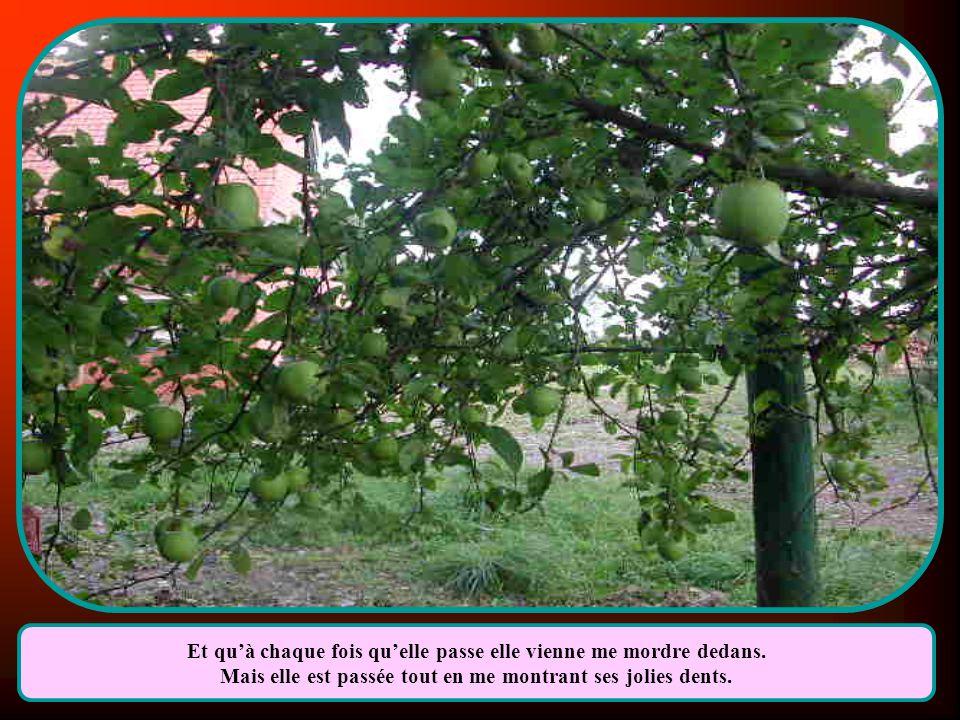 A la foire du village un jour je lui ai soupiré Que je voudrais être une pomme suspendue à un pommier.
