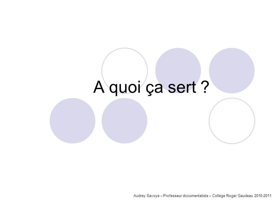 A quoi ça sert ? Audrey Savoye – Professeur documentaliste – Collège Roger Gaudeau 2010-2011