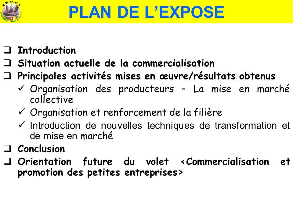 PLAN DE LEXPOSE Introduction Situation actuelle de la commercialisation Principales activités mises en œuvre/résultats obtenus Organisation des produc