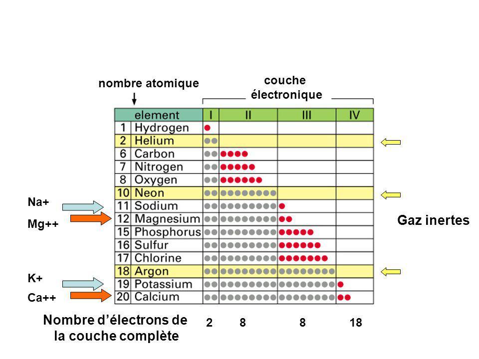 nombre atomique couche électronique 28818 Nombre délectrons de la couche complète Gaz inertes Na+ K+ Ca++ Mg++