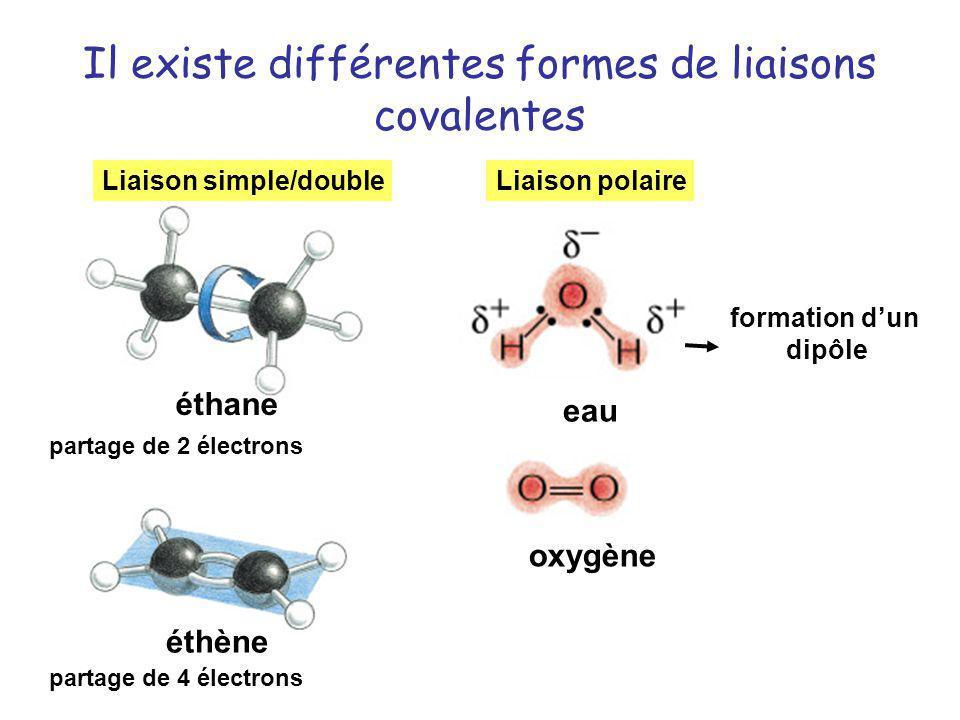 Il existe différentes formes de liaisons covalentes oxygène eau éthane éthène Liaison simple/doubleLiaison polaire formation dun dipôle partage de 2 é