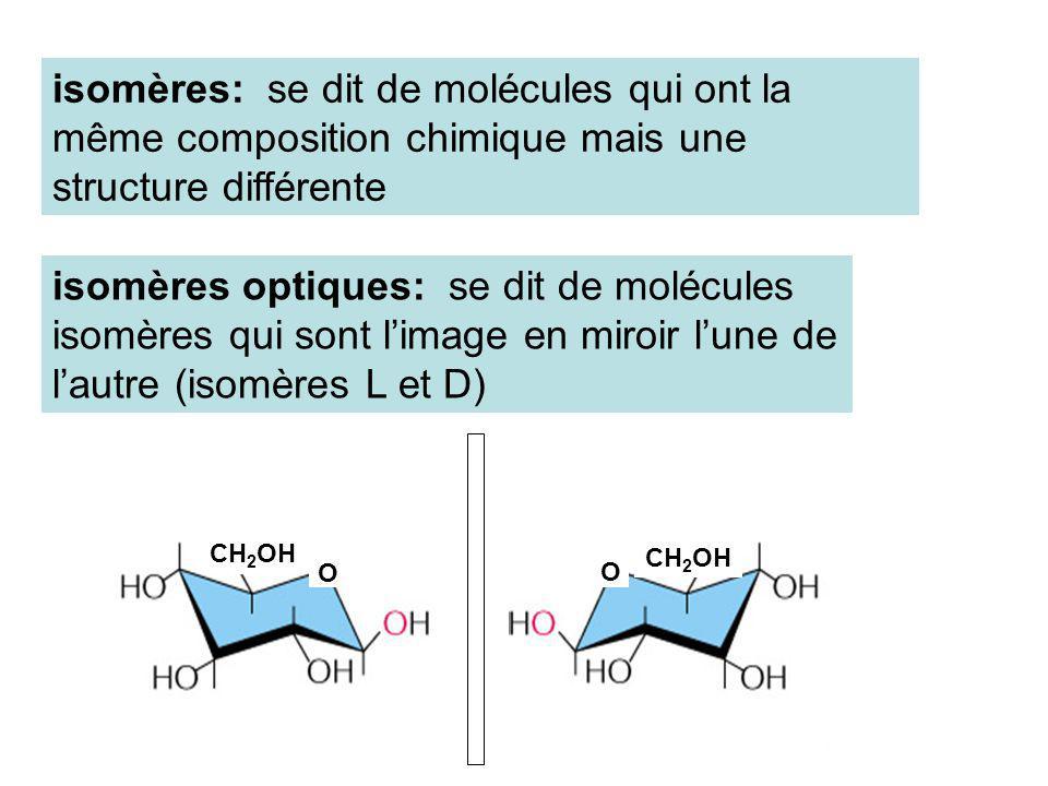 O O CH 2 OH isomères: se dit de molécules qui ont la même composition chimique mais une structure différente isomères optiques: se dit de molécules is