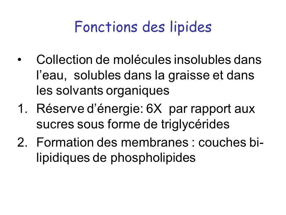 Fonctions des lipides Collection de molécules insolubles dans leau, solubles dans la graisse et dans les solvants organiques 1.Réserve dénergie: 6X pa