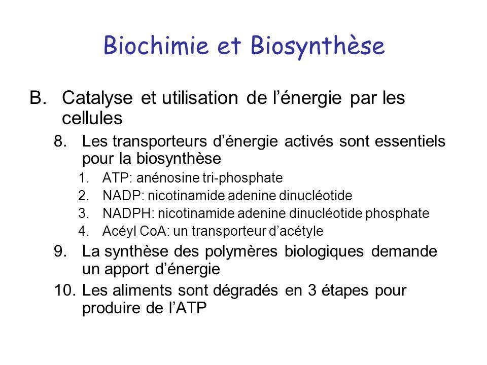 Biochimie et Biosynthèse B.Catalyse et utilisation de lénergie par les cellules 8.Les transporteurs dénergie activés sont essentiels pour la biosynthè