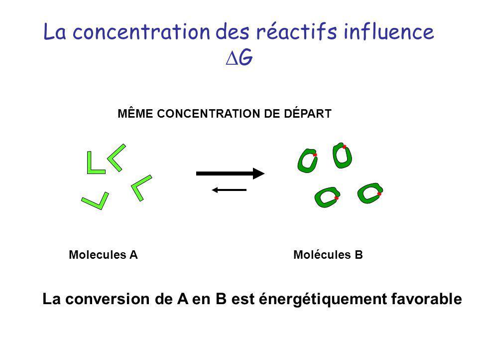La concentration des réactifs influence G MÊME CONCENTRATION DE DÉPART Molecules AMolécules B La conversion de A en B est énergétiquement favorable