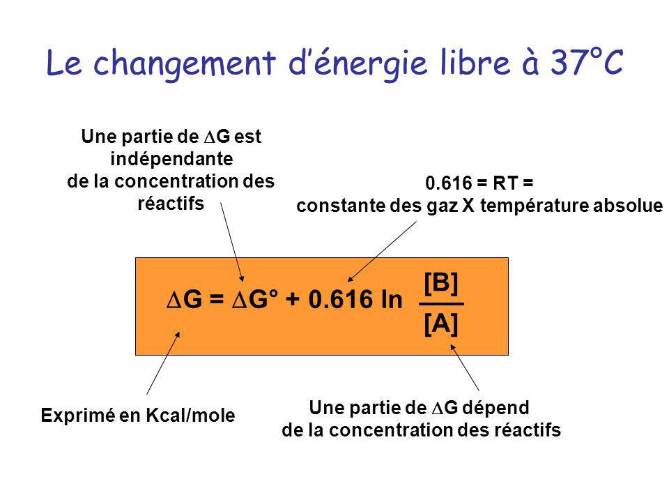 Le changement dénergie libre à 37°C Une partie de G est indépendante de la concentration des réactifs Une partie de G dépend de la concentration des r