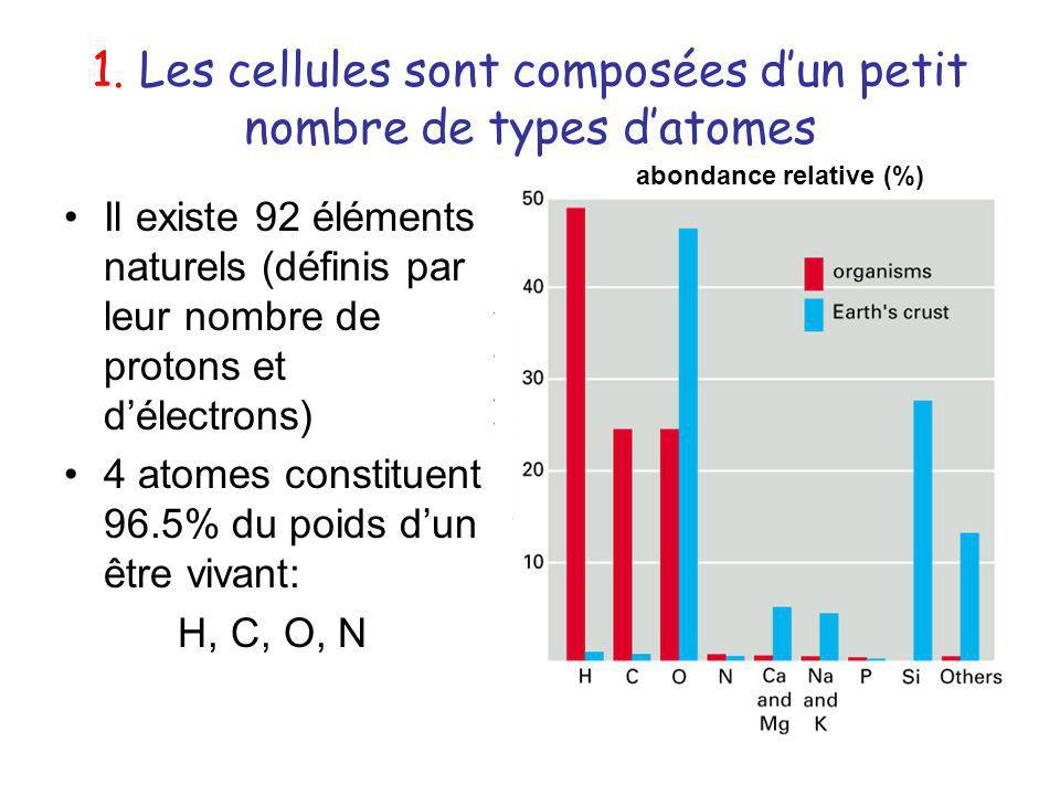 1. Les cellules sont composées dun petit nombre de types datomes Il existe 92 éléments naturels (définis par leur nombre de protons et délectrons) 4 a