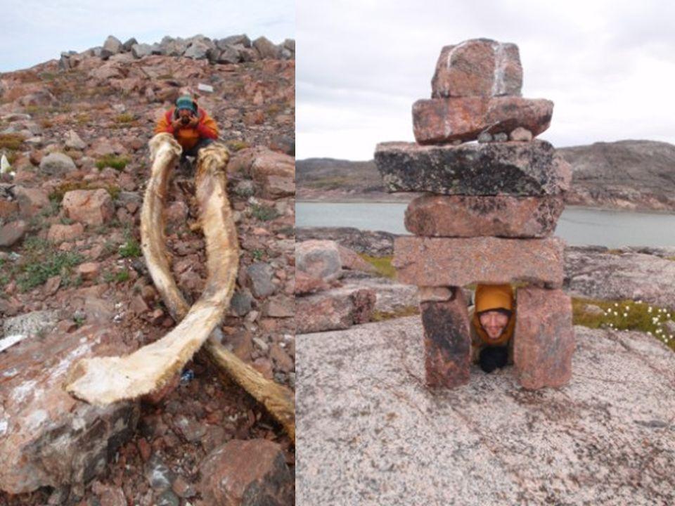 Pelly Bay et Kugaaruk Coincés face au but par le vent du Nord Premiers humains depuis 53 jours ! Brusque retour à la vie sociale, choc culturel Partag
