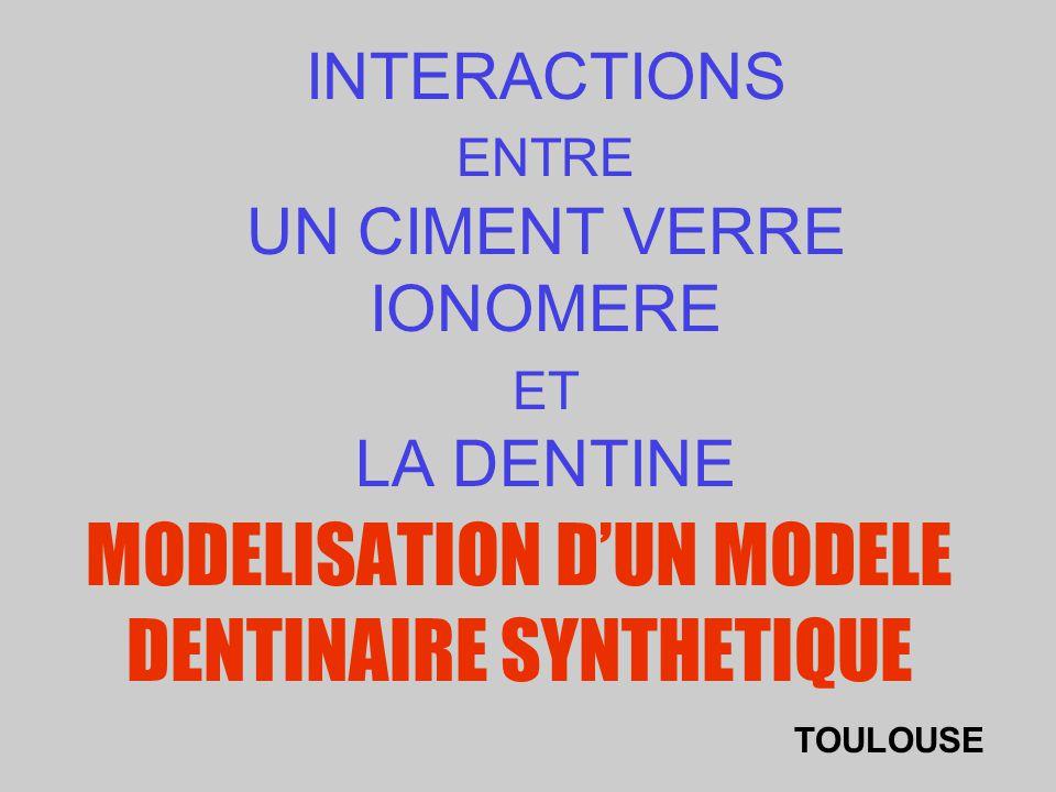 INTERACTIONS ENTRE UN CIMENT VERRE IONOMERE ET LA DENTINE MODELISATION DUN MODELE DENTINAIRE SYNTHETIQUE TOULOUSE
