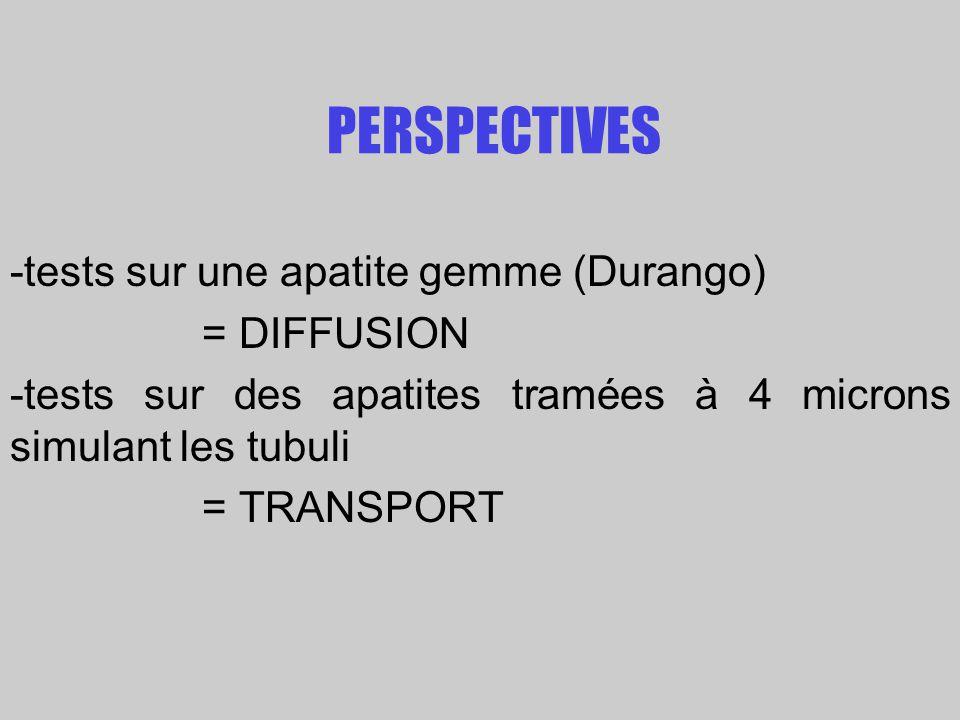 PERSPECTIVES -tests sur une apatite gemme (Durango) = DIFFUSION -tests sur des apatites tramées à 4 microns simulant les tubuli = TRANSPORT