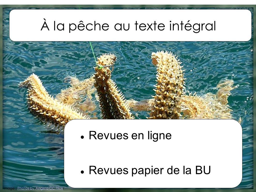 À la pêche au texte intégral Revues en ligne Revues papier de la BU mage : Photos by Angela CC FlickrPhotos by Angela CC Flick
