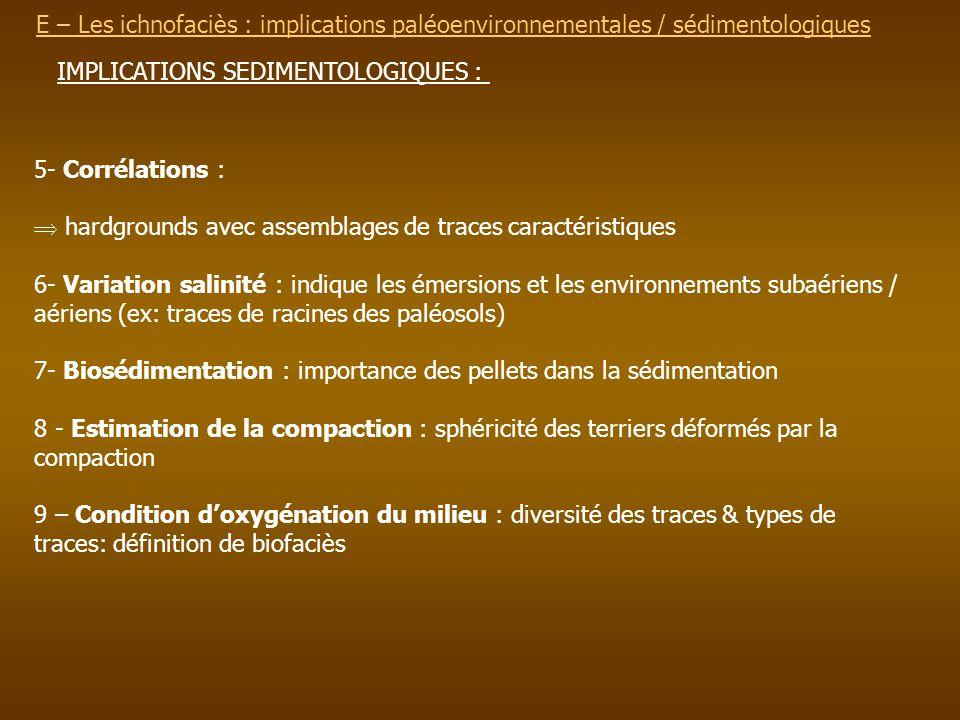 E – Les ichnofaciès : implications paléoenvironnementalesE – Les ichnofaciès : implications paléoenvironnementales / sédimentologiques IMPLICATIONS SE