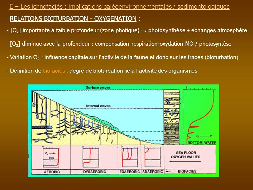 E – Les ichnofaciès : implications paléoenvironnementalesE – Les ichnofaciès : implications paléoenvironnementales / sédimentologiques RELATIONS BIOTU