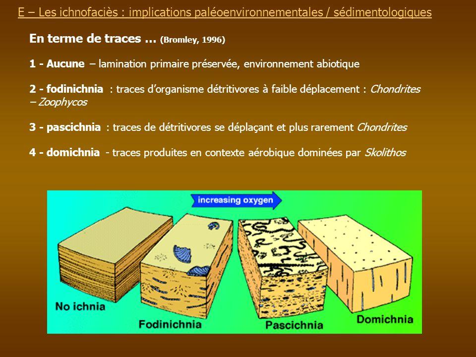 E – Les ichnofaciès : implications paléoenvironnementalesE – Les ichnofaciès : implications paléoenvironnementales / sédimentologiques 1 - Aucune – la