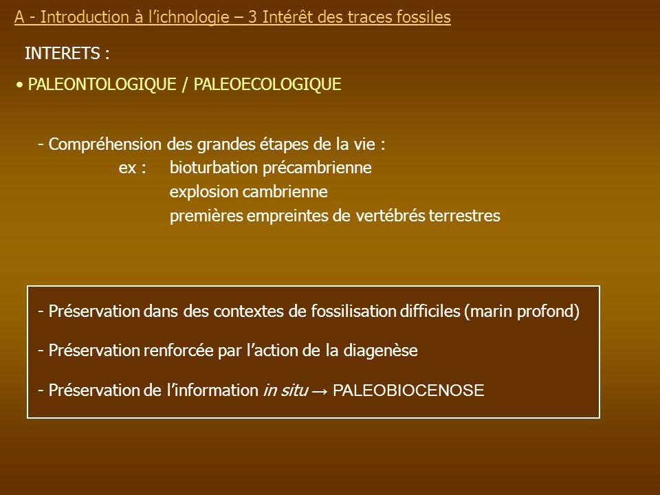 INTERETS : - Préservation dans des contextes de fossilisation difficiles (marin profond) - Préservation renforcée par laction de la diagenèse - Préser