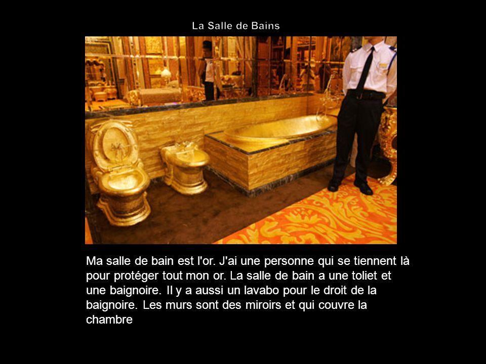 Ma salle de bain est l or. J ai une personne qui se tiennent là pour protéger tout mon or.