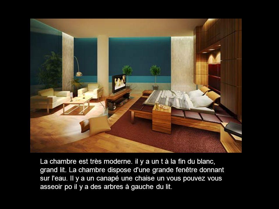 La chambre est très moderne. il y a un t à la fin du blanc, grand lit.