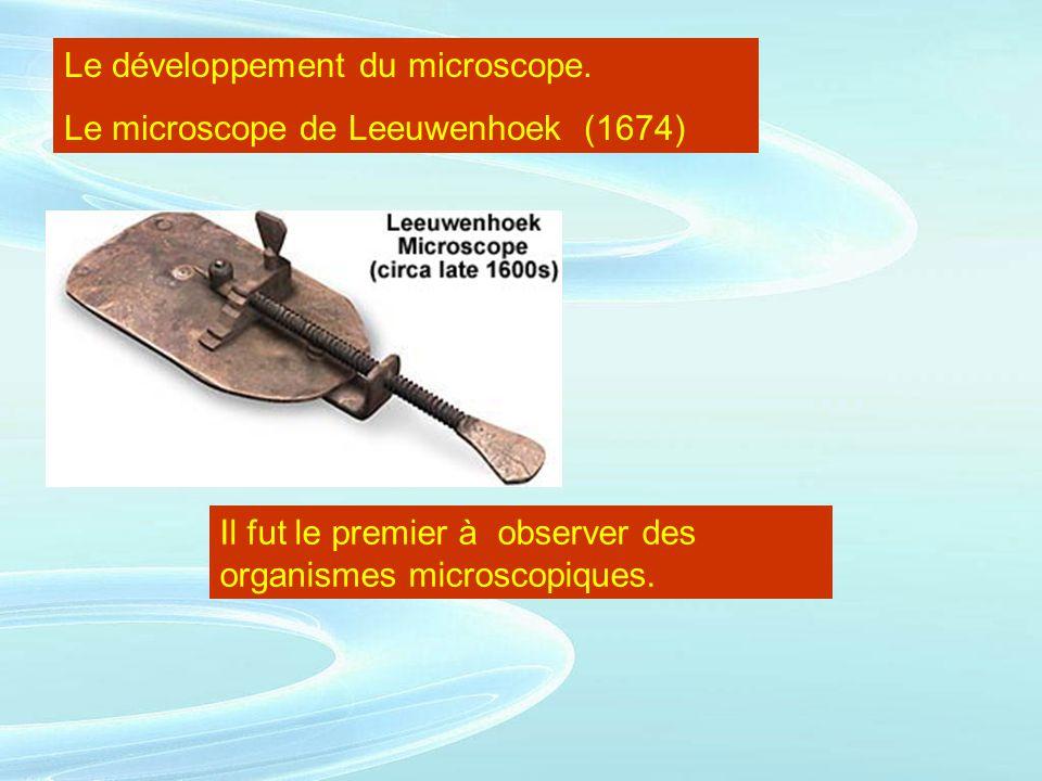 Le développement du microscope. Le microscope de Leeuwenhoek (1674) Il fut le premier à observer des organismes microscopiques.