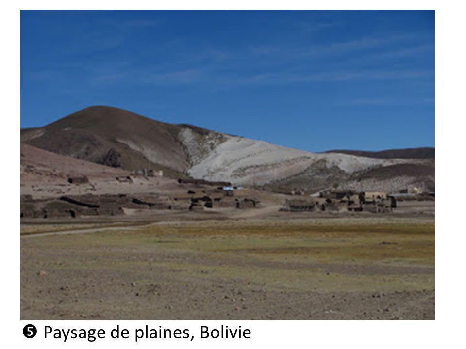 Paysage de plaines, Bolivie