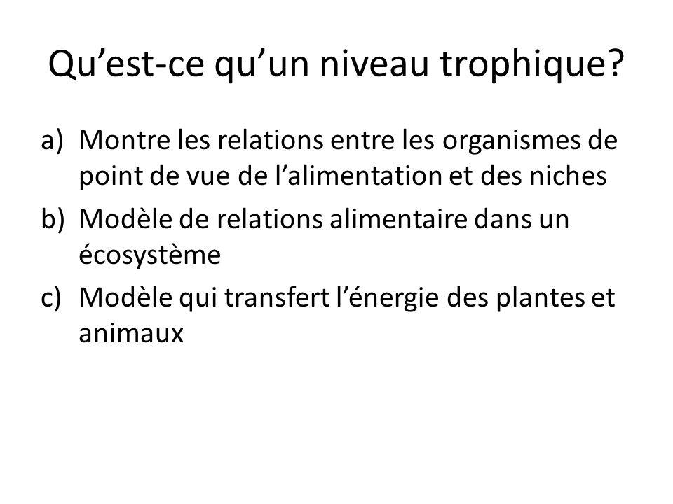 Quest-ce quun niveau trophique? a)Montre les relations entre les organismes de point de vue de lalimentation et des niches b)Modèle de relations alime