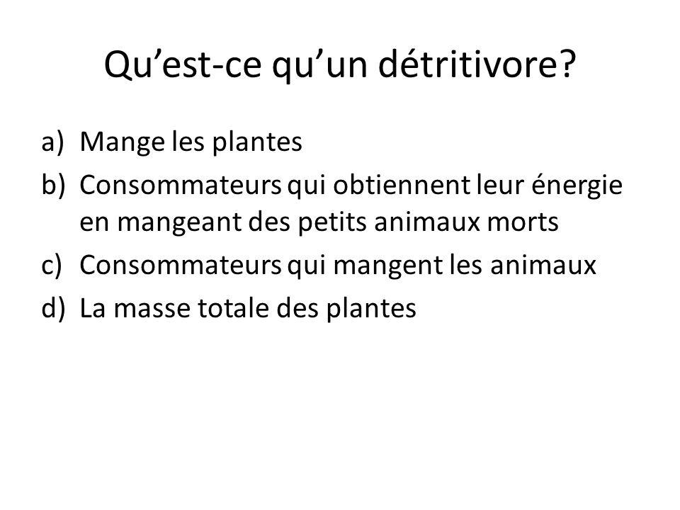 Quest-ce quun détritivore? a)Mange les plantes b)Consommateurs qui obtiennent leur énergie en mangeant des petits animaux morts c)Consommateurs qui ma