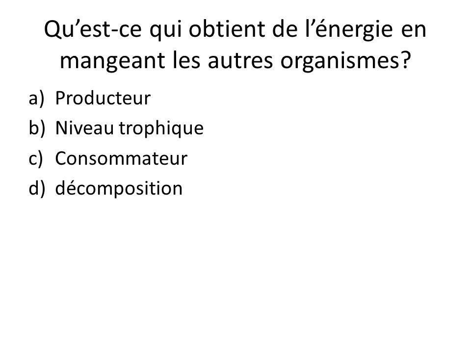 Quest-ce qui obtient de lénergie en mangeant les autres organismes? a)Producteur b)Niveau trophique c)Consommateur d)décomposition