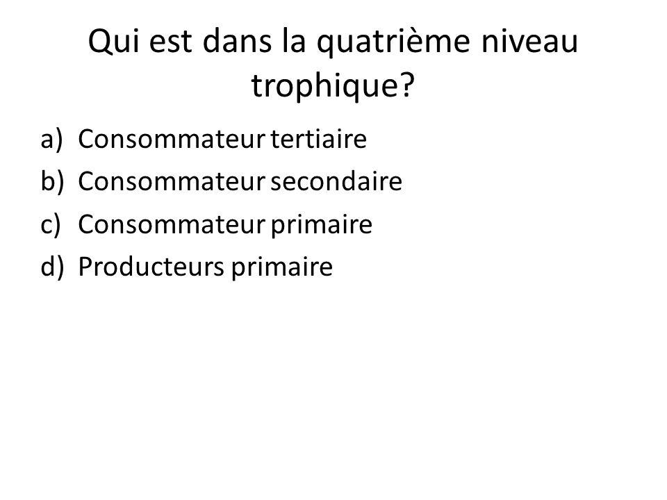Qui est dans la quatrième niveau trophique? a)Consommateur tertiaire b)Consommateur secondaire c)Consommateur primaire d)Producteurs primaire
