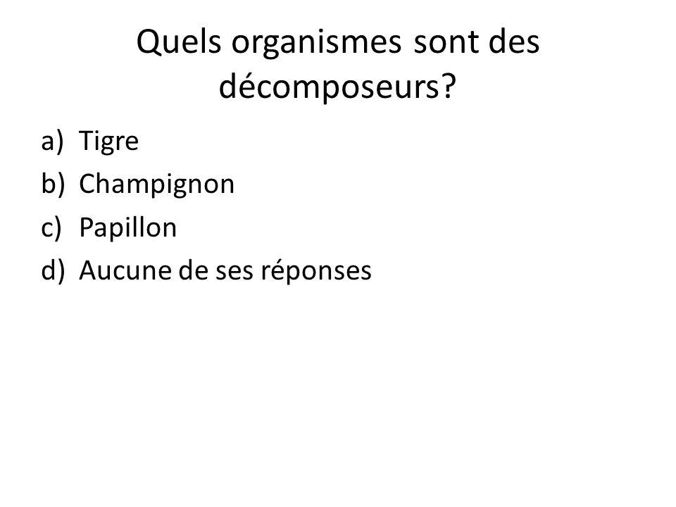 Quels organismes sont des décomposeurs? a)Tigre b)Champignon c)Papillon d)Aucune de ses réponses