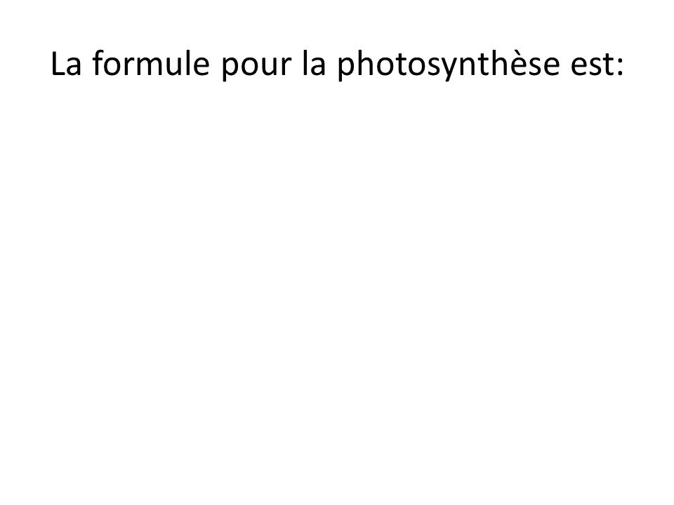 La formule pour la photosynthèse est: