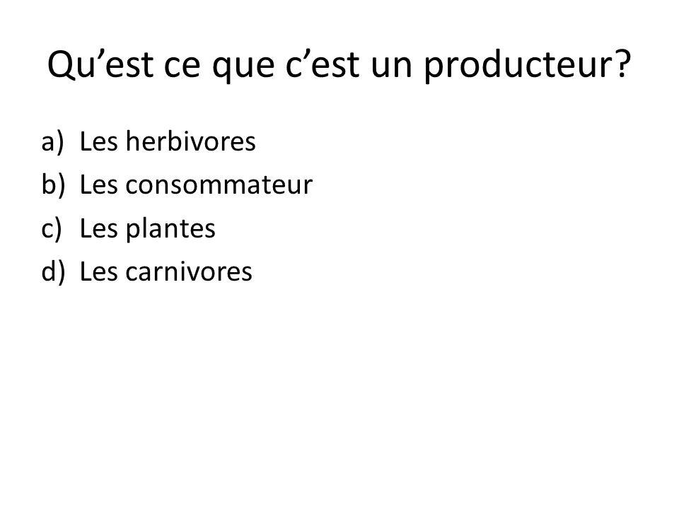 Quest ce que cest un producteur? a)Les herbivores b)Les consommateur c)Les plantes d)Les carnivores