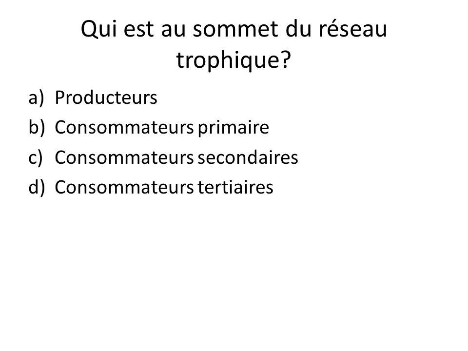 Qui est au sommet du réseau trophique? a)Producteurs b)Consommateurs primaire c)Consommateurs secondaires d)Consommateurs tertiaires
