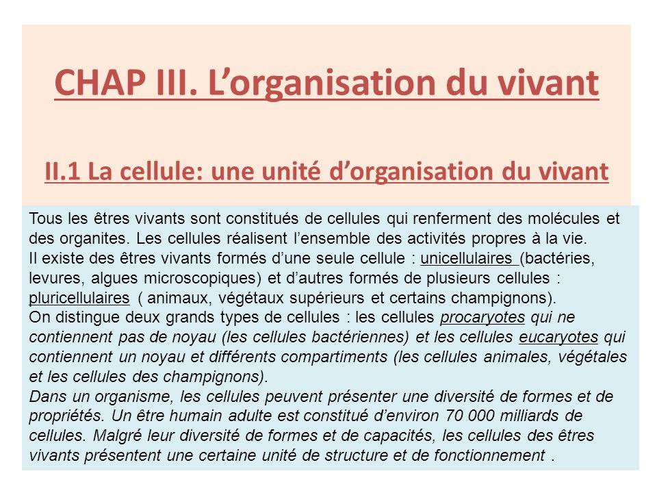 CHAP III. Lorganisation du vivant II.1 La cellule: une unité dorganisation du vivant Tous les êtres vivants sont constitués de cellules qui renferment