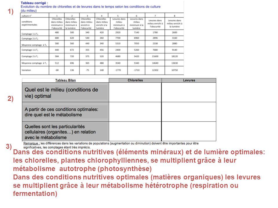 1) 2) 3) Dans des conditions nutritives (éléments minéraux) et de lumière optimales: les chlorelles, plantes chlorophylliennes, se multiplient grâce à