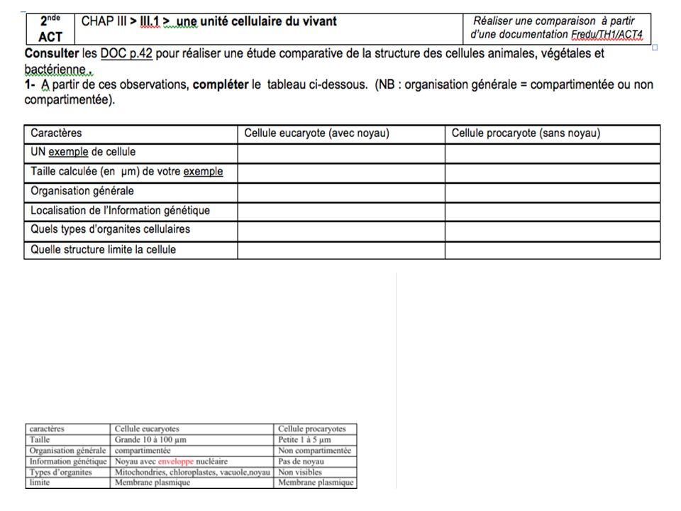 II.2 Le métabolisme cellulaire et son contrôle Les réactions du métabolisme…oups