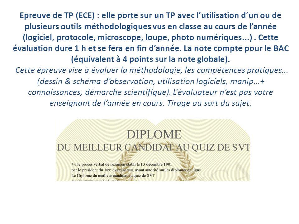 Epreuve de TP (ECE) : elle porte sur un TP avec lutilisation dun ou de plusieurs outils méthodologiques vus en classe au cours de lannée (logiciel, protocole, microscope, loupe, photo numériques...).