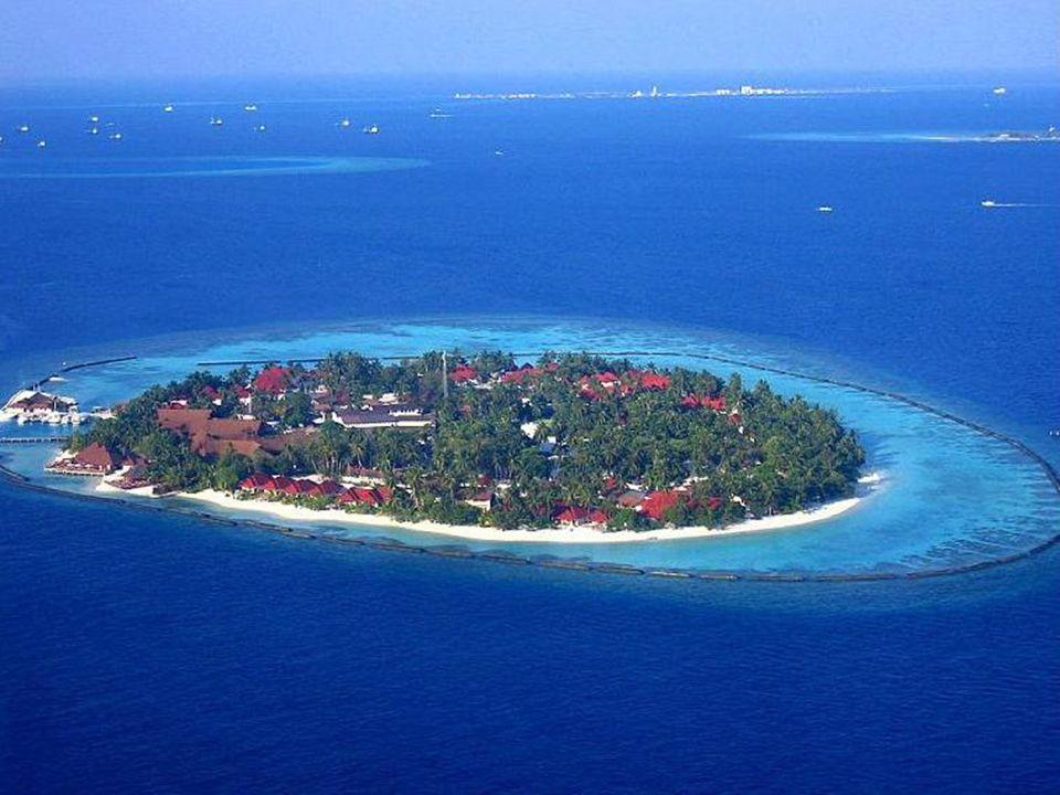 La République des îles Maldives est un pays situé dans l'Océan Indien au sud-ouest du Sri Lanka et en Inde, au sud de l'Asie, constitué par 1.196 îles
